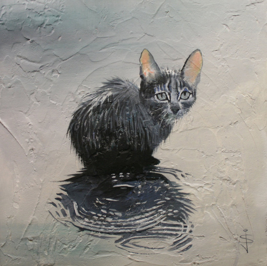 Cat In The Rain by Jan Szymczuk.